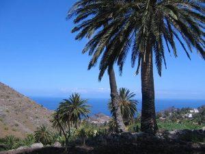 Fototapete La Gomera