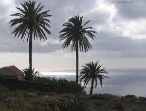 Silver sea La Gomera