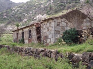 Ruine mit Mandeln